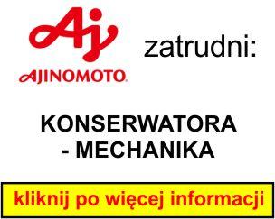 Ajinomoto - KONSERWATORA - MECHANIKA